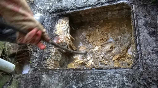 clearing blocked drain